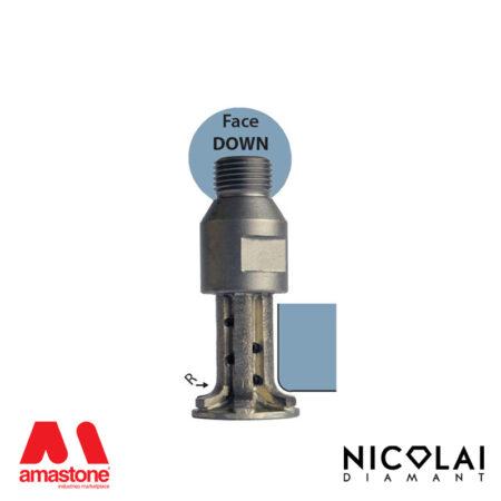 Mola da profilo 20 – Forma A30 R6 (Faccia sotto) - Nicolai