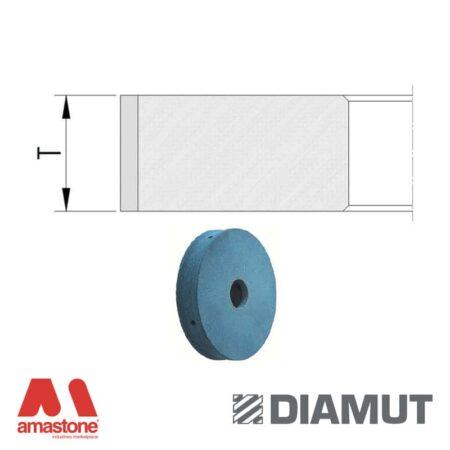 Mole periferiche lucidanti SHINY profilo piatto Ø100 mm - Vetro - Diamut