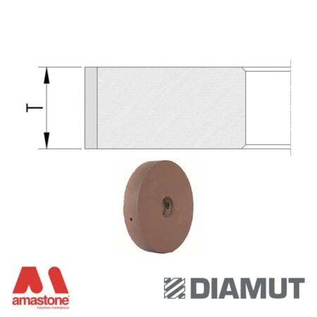 Mole periferiche lucidanti standard profilo piatto Ø100 mm con passaggio acqua - Vetro - Diamut