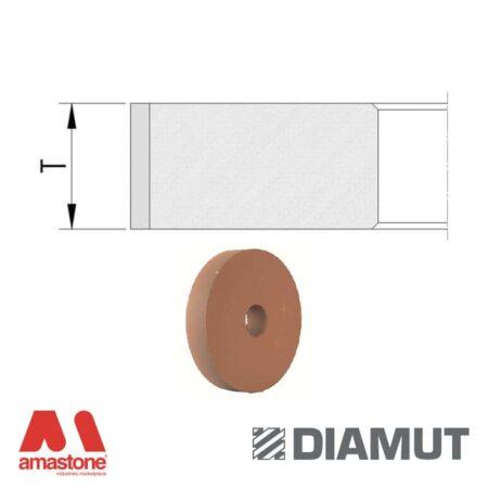 Mole periferiche lucidanti standard profilo piatto Ø100 mm senza passaggio acqua - Vetro - Diamut
